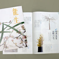 "月刊「いけ花龍生」1年間購読 Monthly ""Ikebana Ryusei"" annual subscription"