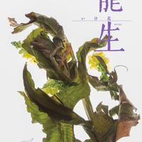 月刊『いけ花龍生』2018年2月号【国内送料無料】