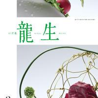 """月刊『いけ花龍生』2021年3月号【国内送料無料】Monthly """"Ikebana Ryusei"""" magazine March,2021 issue"""