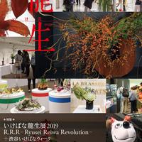 """月刊『いけ花龍生』2019年12月号【国内送料無料】Monthly """"Ikebana Ryusei"""" magazine  Dec.2019 issue"""