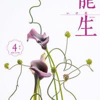 """月刊『いけ花龍生』2020年4月号【国内送料無料】Monthly """"Ikebana Ryusei"""" magazine  Apr.2020 issue"""