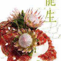 月刊『いけ花龍生』2019年7月号【国内送料無料】