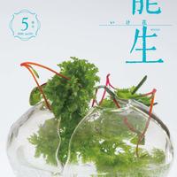 """月刊『いけ花龍生』2020年5月号【国内送料無料】Monthly """"Ikebana Ryusei"""" magazine May,2020 issue"""