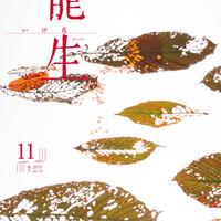 """月刊『いけ花龍生』2019年11月号【国内送料無料】Monthly """"Ikebana Ryusei"""" magazine  Nov.2019 issue"""
