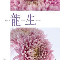 """月刊『いけ花龍生』2021年1月号【国内送料無料】Monthly """"Ikebana Ryusei"""" magazine Jan,2021 issue"""
