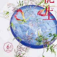 """月刊『いけ花龍生』2020年6月号【国内送料無料】Monthly """"Ikebana Ryusei"""" magazine June,2020 issue"""