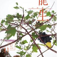 月刊『いけ花龍生』2017年11月号