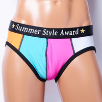 SUMMER STYLE AWARD UNDERPANTS (MULTI COLOR)