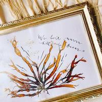 ※売り切れました【サバソニクラファン 限定1名サバ】世界に一つだけ。伊豆の海藻で作った海藻おしば