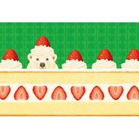 POSTCARD 「食べちゃうの?クリスマスケーキ」