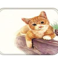猫 ねこ ネコ パグ マット 玄関マット インテリア ペット