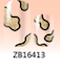 ZB16413