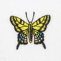 3_02アゲハチョウ