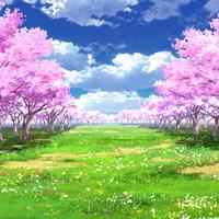 【イラスト背景】【合作】時差雲05_桜04_草原01