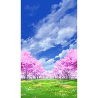 【イラスト背景】【合作】青空_縦PAN用05_桜05_草原01