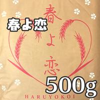 [山本忠信商店]北海道産強力粉(春よ恋)500g