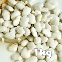 北海道産 白花豆1kg