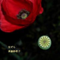 自主製作2nd.アルバム「星ぞら」