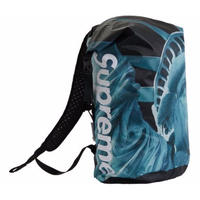 Supreme®︎ The North Face®︎ Statue of Liberty Waterproof Backpack