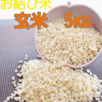♯4《お結び米》新米 5キロ 玄米