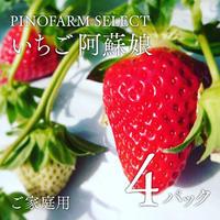 【PINOFARM SELECT】熊本県産いちご阿蘇娘4パック入り箱(ご家庭用)