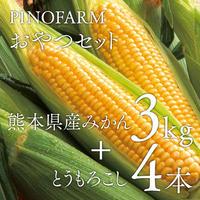 【PINOFARMおやつセット】熊本県産みかん3kg+とうもろこし4本