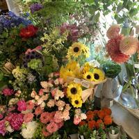 季節のグリーンとお花の定期便