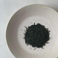 2020年 新茶 藤緑 福岡