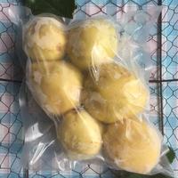 グアバ・ホワイト1kg【加工用】【冷凍パック】
