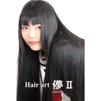 HA19 Hair art 儚Ⅱ DVD