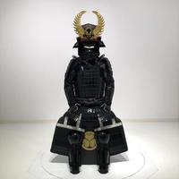 【Y-050】Ieyasu Tokunaga