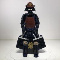 【O-059】Nokonitoodoshisyuokegawanimaidogusoku