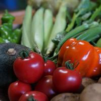 野菜セットM 1回分(ご利用が2回目以降)