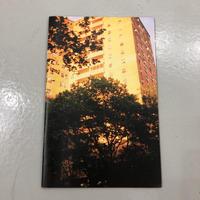 """Joe Skilton """"Honey Dipped Early Summer in NYC"""""""