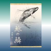 劇団綺畸『鯨の鱗』台本