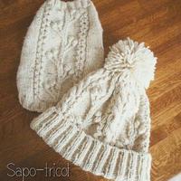 【編み図】ワンコとおそろい  アラン模様のニット帽~木の実~