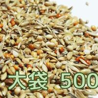【無農薬】 フィンチ・スペシャルブレンド (旧:文鳥・フィンチ向けシード)500g ※大袋