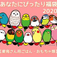 ◆完売◆あなたにぴったり福袋【愛鳥さん用ごはん・おもちゃ類】※同梱不可※
