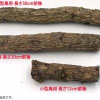 コルクの止まり木(中)