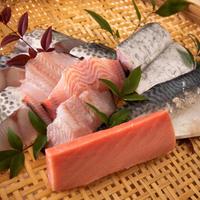 サスエ前田の特選鮮魚 2〜3人前