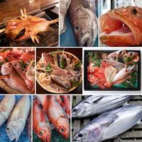 一年一括払い!毎月(計14回)魚が届く特別な定期便!