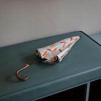 PARASOL <Branch Orange> 長傘