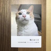 3冊セット 猫の写真集「俺こはく/俺こはく2/俺こはく3」ST124