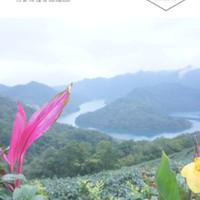 E-BOOK 台湾通信 Vol.1 台湾茶を訪ねる旅
