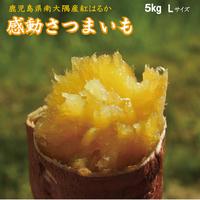 感動さつまいも 鹿児島県産紅はるか 5kg【L】サイズ