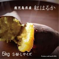 感動さつまいも 鹿児島県産紅はるか 5kg S/M/Lサイズ