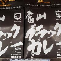 インド料理店デリー 富山ブラックカレー[辛口] 150g