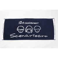 10th anniversary towel