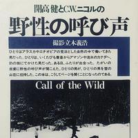 野生の呼び声