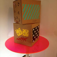 SCHROFF  PRINTED BOX    LIMITED EDITION